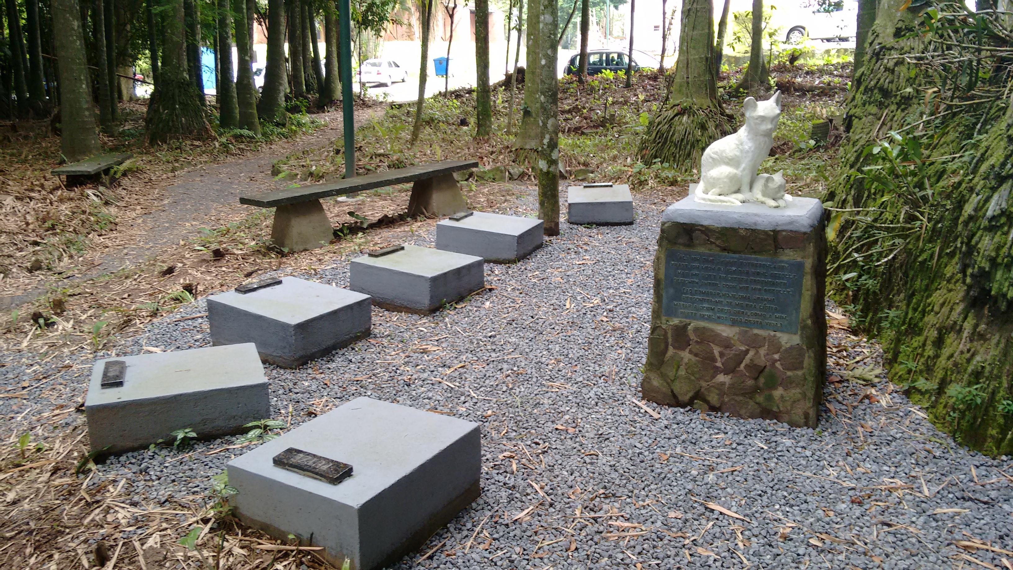 cemiterio-de-gatos-2