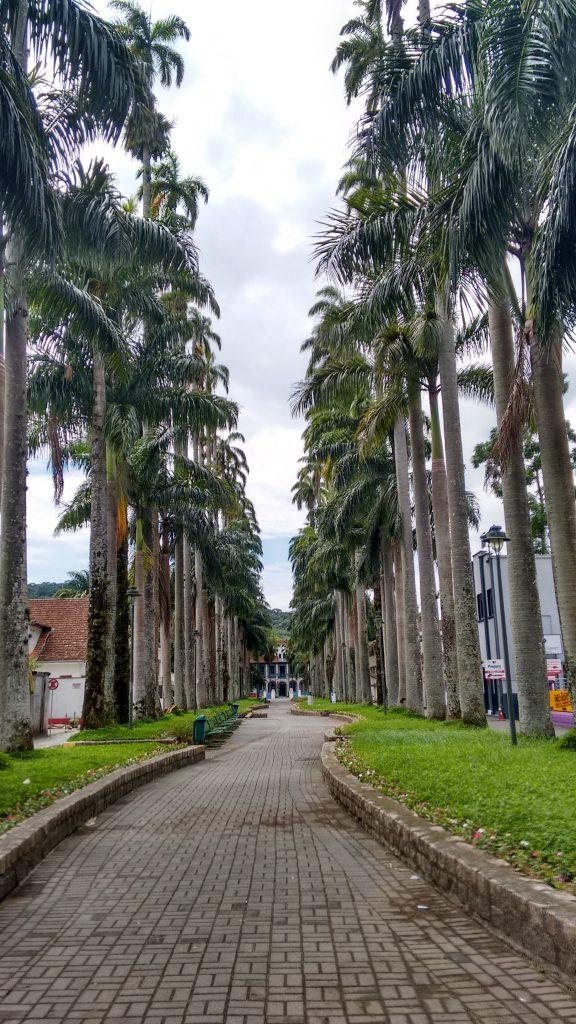 Museu Nacional da Imigração e Colonização, Alameda das Palmeiras