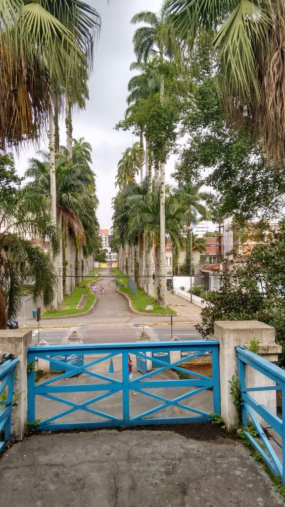 Rua das Palmeiras vista do Museu Nacional da Imigração e Colonização