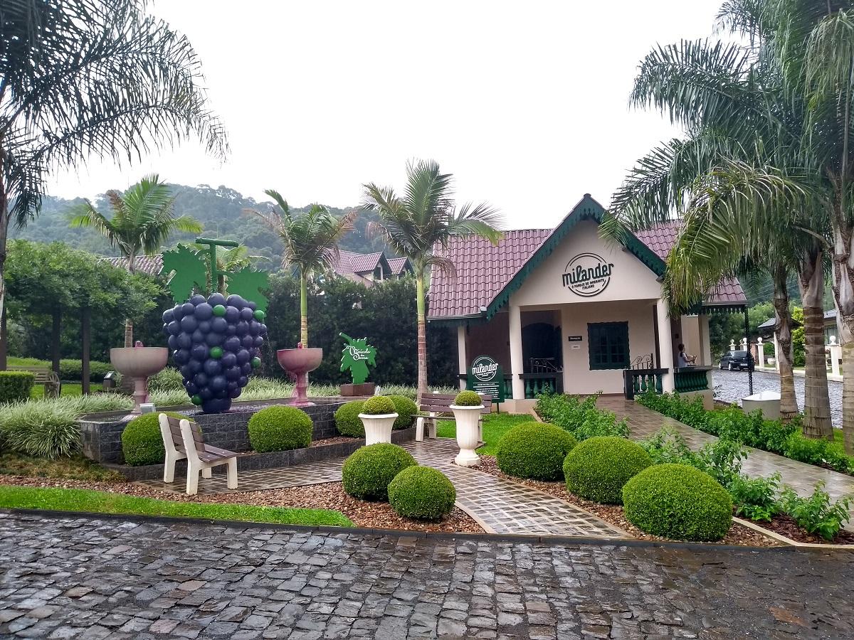 Pinheiro Preto Santa Catarina Parque Milander