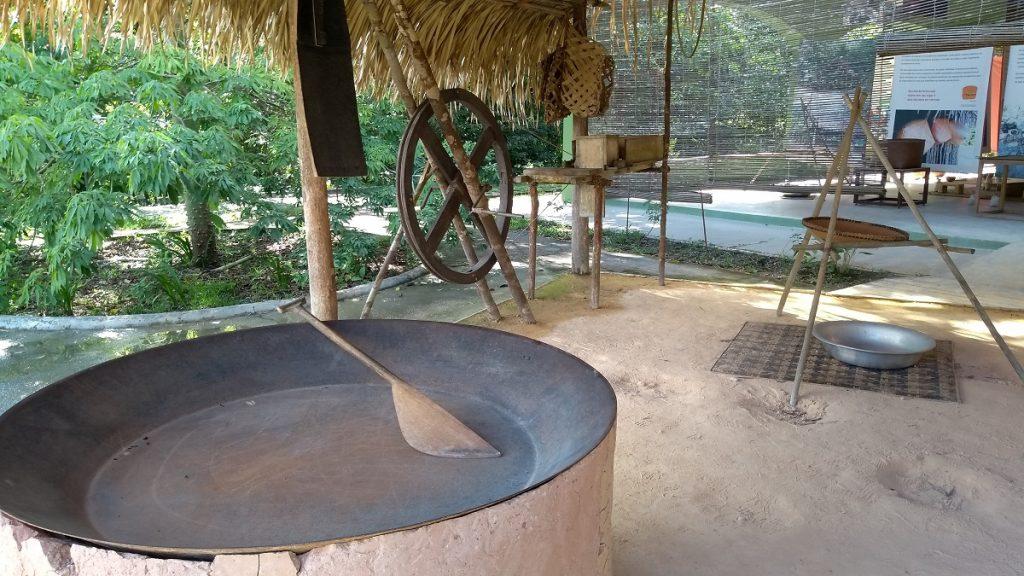 Exposição sobre a cultura da mandioca