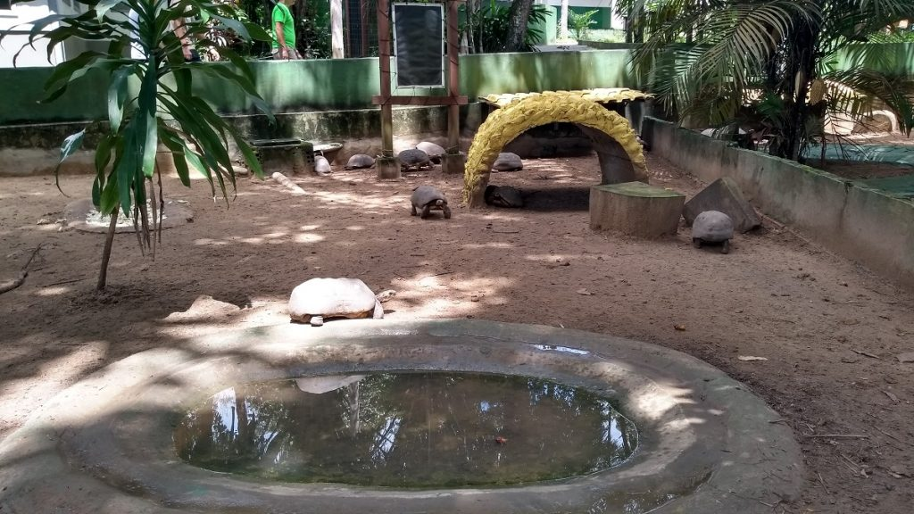 Zoológico do CIGS Viveiro dos Jabutis