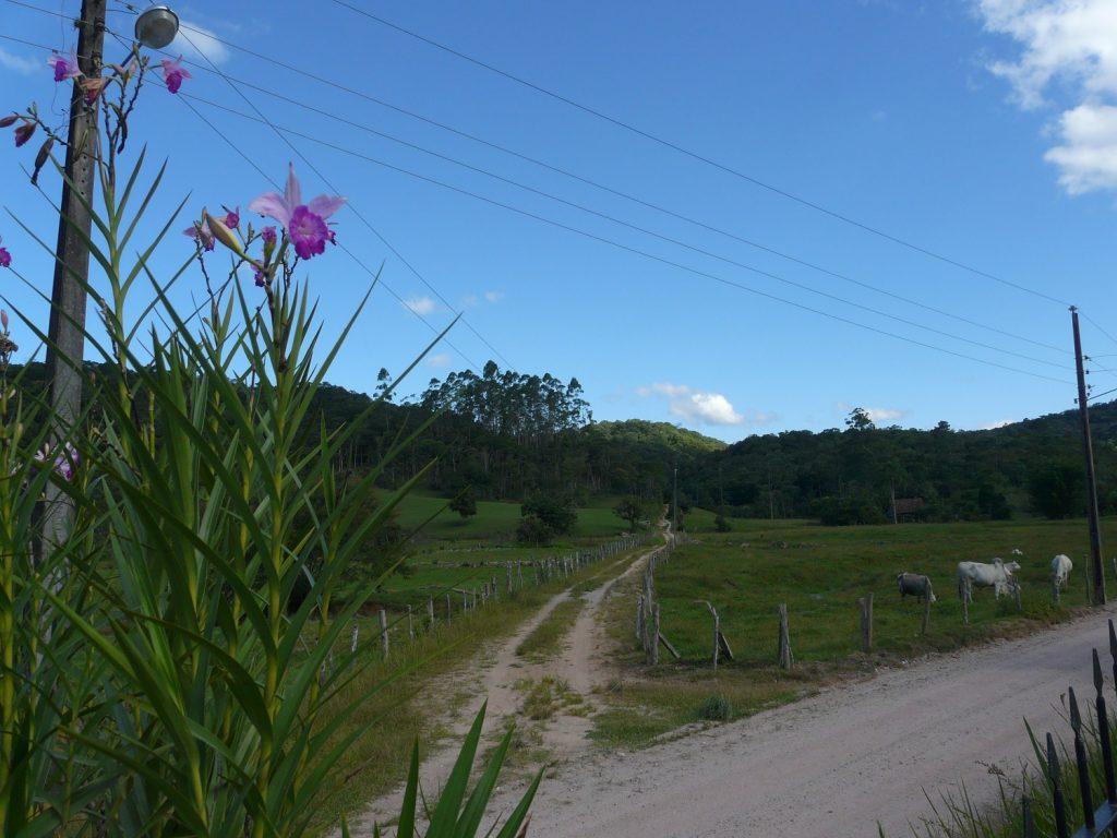 Gaspar e suas paisagens rurais
